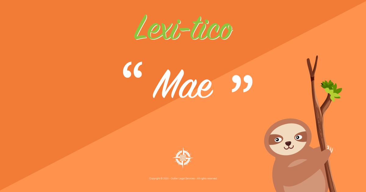 lexitico mae